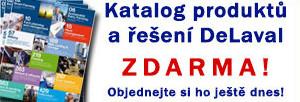 katalogweb